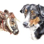 Lucy Ellie Bailey Art Pet Portrait Artist